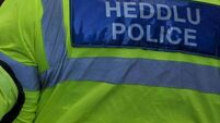 welsh-police-to-face-probe-after-killing-dog-intentionally.jpg