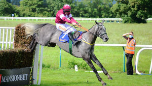 Wexford and Sligo tips: In Your Shadow well handicapped on return to hurdling