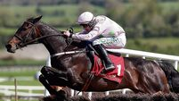 Ruby Walsh: Benie in better form than last year, so she gets vote