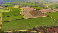 Up to €18,000 per acre sought for 23-acre non-residential Carrigaline farm