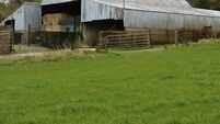 Sale of non-residential farm near Bandon with excellent road  access