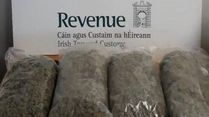 €80,000 worth of suspected cannabis herb           seized in Shannon Airport