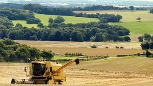 IFA point to difficult harvest, as yields have remained very variable