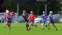 Confirmed: Irish Examiner to live-stream Cork Camogie decider this Sunday