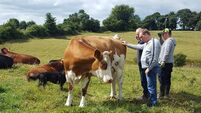 Putting social farming at the heart of rural matters