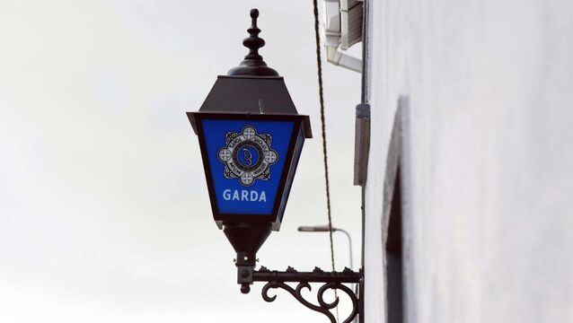 <p>In a statement this evening, Gardaí said an investigation is underway to identify the organisers of the gathering. Picture: Denis Minihane.</p>