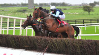 Punchestown tips: Fine opportunity for Yound Ted to get off the mark