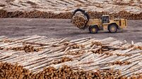 Logging and Forestry Industry in British Columbia