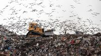 Call to ban materials from landfill