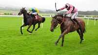 Punchestown report: Line Out justifies market support