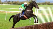 Unexcepted shines on chasing bow at Tipperary