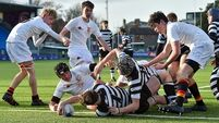 Leinster Schools Junior Cup: Roscrea hold off Pres to reach quarter-final