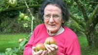 101-year-old apple grower among participants as Galway prepares to be European capital of culture