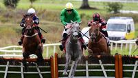 Sligo & Dundalk Tips: Anjalawi can get off the mark despite top weight