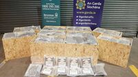 Gardaí and Revenue seize €7m worth of cannabis in Dublin