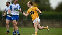 Antrim v Waterford - Allianz Football League Division 4 Round 7