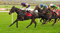 Punchestown report: Latest Exhibition warms to task on chasing debut after early scares