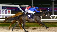 John Oxx back among the winners with Regal Eagle