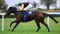 Clonmel report: Western Victory makes amends for Listowel fall