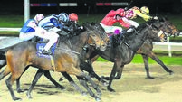 Dundalk report: Sam Ewing continues winning ways with double delight