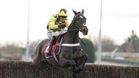 Kempton Park Races - November 23rd