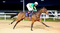 Dundalk report: Double delight for Joseph O'Brien