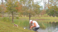 Man rescues puppy from jaws of alligator in Florida
