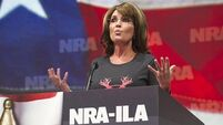 Palin tells US gun owners: Don't give up