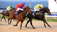 Dundalk tips: Russian River ready to flow