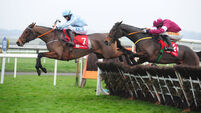 Fairyhouse Races - November 29th