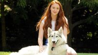 Happy fact: Sansa Stark adopted her direwolf, Lady