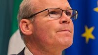 Coveney on Brexit: Work to do, but deal is possible