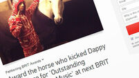 Horse for 'outstanding contribution to music' award - after kicking Dappy