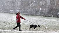 Snow warning in place for five counties and yellow wind alert issued for west coast