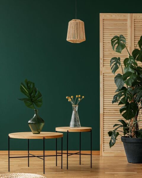 Deep evergreen shades are set to trend in 2021 like the Bofin Fern from Fleetwood which is inviting and sophisticated.