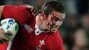 North eyes end to Lions' Aussie hoodoo