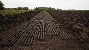 Bord Na Móna ends peat harvesting in drive for greener energy production