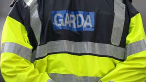 Two fined and car seized after non-essential journey from Cork to Kildare
