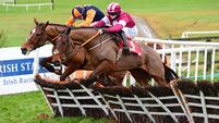 Cheltenham king Nicholls does it again with  glorious four-timer