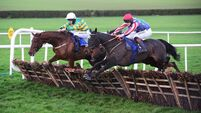 Clonmel tips: Capodanno can make it third time lucky over hurdles