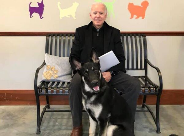 Major will be the first rescue dog to live in the White House. Picture: Facebook.