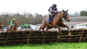Clonmel report: Robbie Power makes only ride of the day count