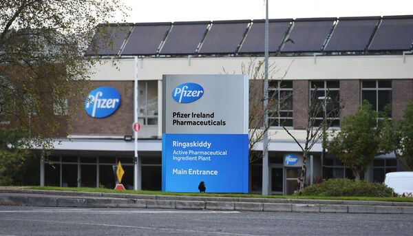 Pfizer Ireland Ringaskiddy plant, Co Cork, is the global epicentre of viagra production. Picture: Larry Cummins