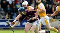 Wexford ease past Antrim to set up Carlow clash