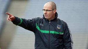 Limerick stage late comeback to win division four