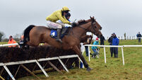 Gowran Park tips: Run Wild Fred has right profile for Thyestes Chase