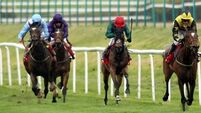 Qatar buy into Oaks favourite