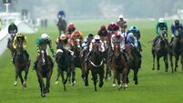 O'Neill ace too sharp at Ascot