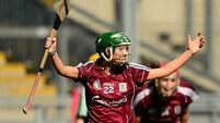 Galway made to work for camogie title
