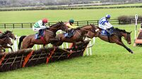 Fairyhouse tips: Showbusiness looks poised to get punters off to a winning start